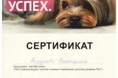 """Сертификат """"Опыт.Знание.Успех"""""""
